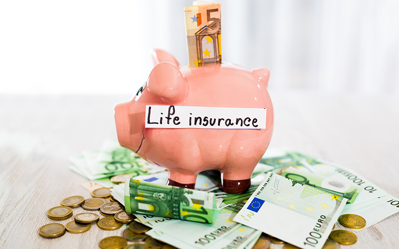 compare term life insurance edmonton